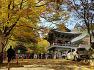 계룡산의 가을 정취에 빠져들다.