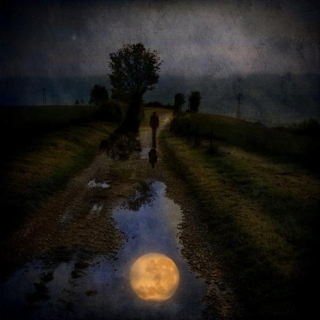 《深夜》钢琴演奏:罗宾斯皮尔伯格 - 空山鸟语 - 月滿江南