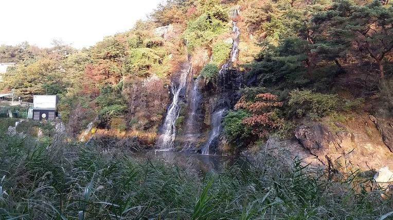 홍제천에서 만보 걷기~
