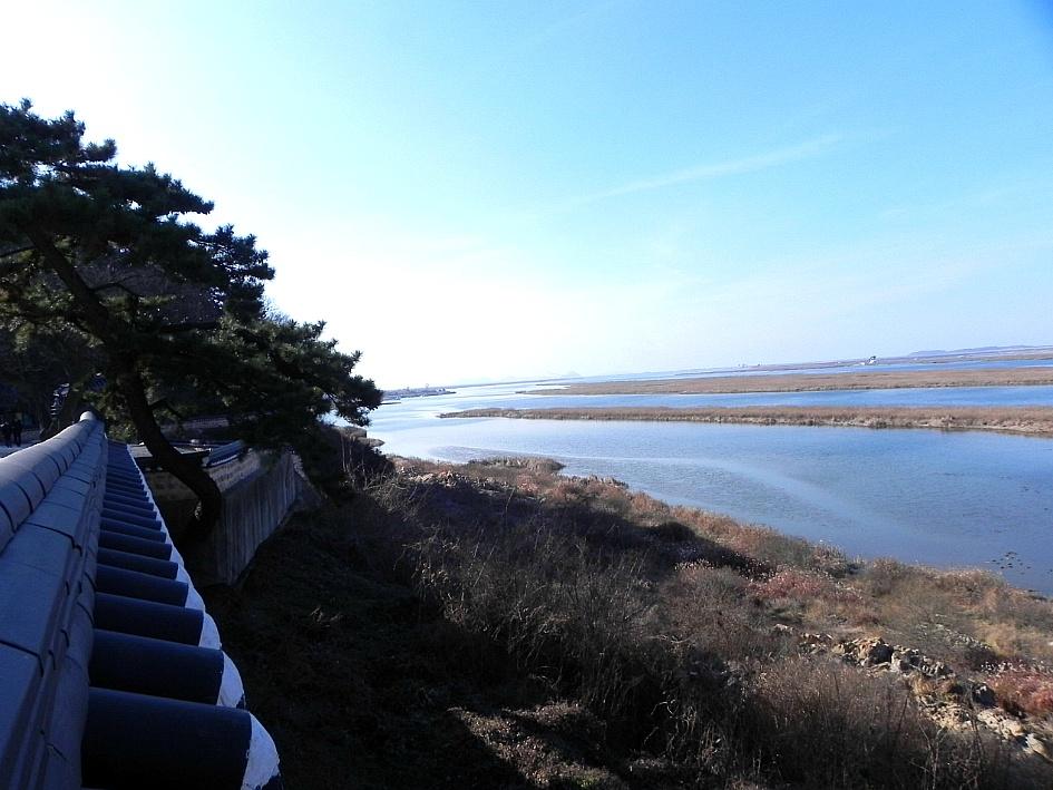 (김제맛집)만경강과 동진강이 만나는 곳 귀족조개인 백합 주산지로 유명한 심포항맛집 화전횟집